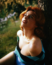 This is an image of Photograph & Poster of Tina Louise 286316