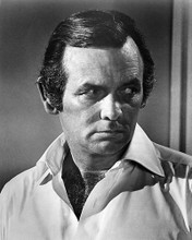 This is an image of Photograph & Poster of David Janssen 195924