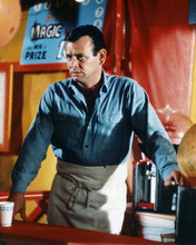 This is an image of Photograph & Poster of David Janssen 286293