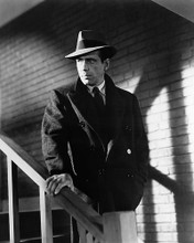 This is an image of Photograph & Poster of Humphrey Bogart 195965