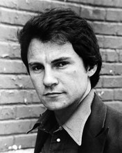This is an image of Photograph & Poster of Harvey Keitel 196029