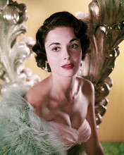 This is an image of Photograph & Poster of Dana Wynter 287034
