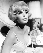 This is an image of Photograph & Poster of Stella Stevens 196153