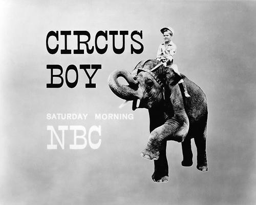 This is an image of Photograph & Poster of Circus Boy 196160