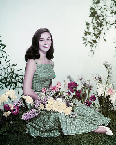 This is an image of Photograph & Poster of Pier Angeli 286429