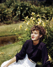 This is an image of Photograph & Poster of Jean Peters 286488