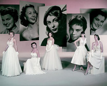 This is an image of Photograph & Poster of Pier Angeli 286501