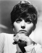 This is an image of Photograph & Poster of Brenda Vaccaro 196065