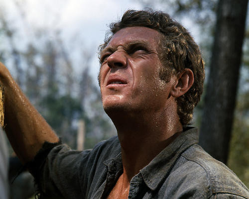 This is an image of Photograph & Poster of Steve McQueen 286583
