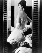 This is an image of Photograph & Poster of Natalie Wood 196312