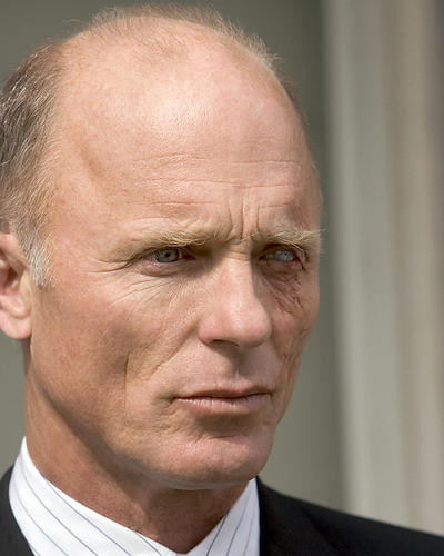 This is an image of Photograph & Poster of Ed Harris 286981