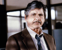 This is an image of Photograph & Poster of Charles Bronson 287133