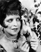 This is an image of Photograph & Poster of Clara Bow 196505
