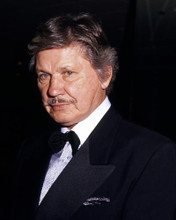 This is an image of Photograph & Poster of Charles Bronson 287145