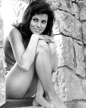 This is an image of Photograph & Poster of Raquel Welch 196534