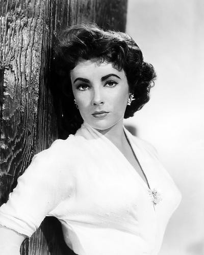 This is an image of Photograph & Poster of Elizabeth Taylor 196588