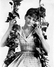 This is an image of Photograph & Poster of Julie Andrews 196603