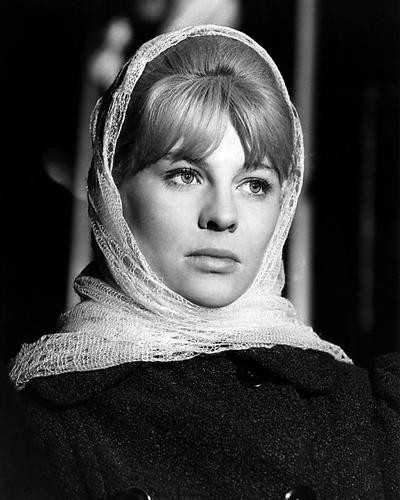 This is an image of Photograph & Poster of Julie Christie 196628