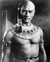 This is an image of Photograph & Poster of Yul Brynner 196681