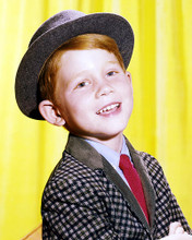 This is an image of Photograph & Poster of Ron Howard 287674