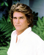 This is an image of Photograph & Poster of Michael Landon 287657