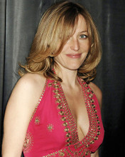 This is an image of Photograph & Poster of Gillian Anderson 287471