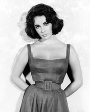 This is an image of Photograph & Poster of Elizabeth Taylor 196818