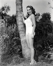 This is an image of Photograph & Poster of Julie Adams 196863
