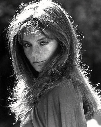 This is an image of Photograph & Poster of Jacqueline Bisset 197083