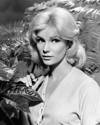 This is an image of Photograph & Poster of Yvette Mimieux 197025