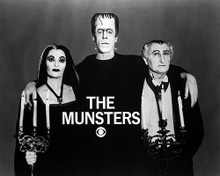 This is an image of Photograph & Poster of The Munsters 197181