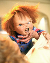 This is an image of Photograph & Poster of Child's Play 288235