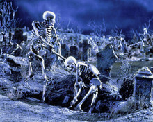 This is an image of Photograph & Poster of Army of Darkness 288251