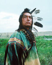 This is an image of Photograph & Poster of Dances with Wolves 288290