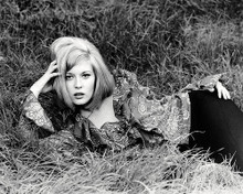 This is an image of Photograph & Poster of Faye Dunaway 197241