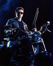 This is an image of Photograph & Poster of Arnold Schwarzenegger 288553