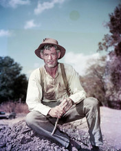 This is an image of Photograph & Poster of Robert Ryan 288819