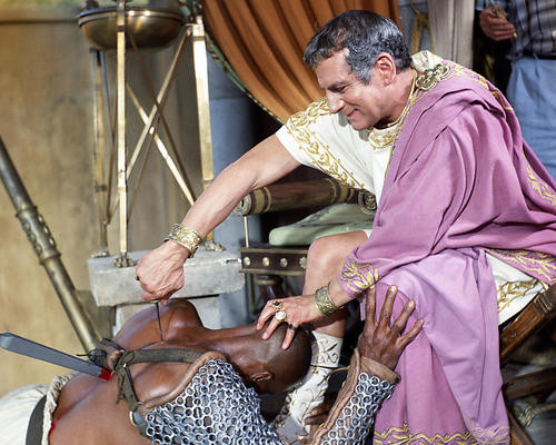 This is an image of Photograph & Poster of Spartacus 288880