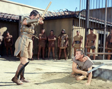 This is an image of Photograph & Poster of Spartacus 288887