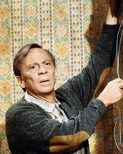 This is an image of Photograph & Poster of Norman Fell 288691
