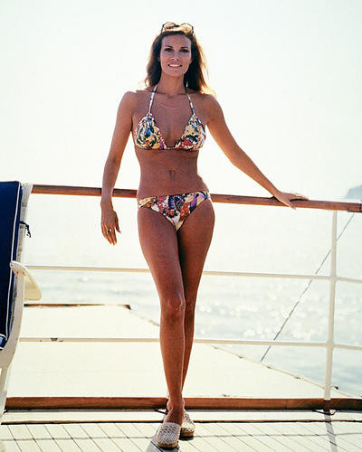 prints posters of raquel welch 288731
