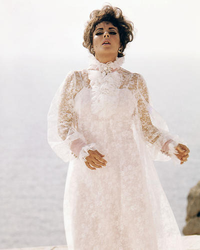 This is an image of Photograph & Poster of Elizabeth Taylor 289048