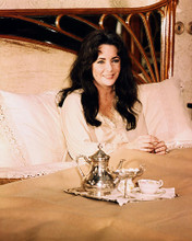This is an image of Photograph & Poster of Elizabeth Taylor 289052