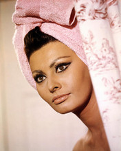 This is an image of Photograph & Poster of Sophia Loren 289059