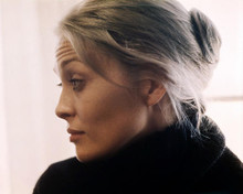 This is an image of Photograph & Poster of Faye Dunaway 289067