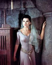 This is an image of Photograph & Poster of Debra Paget 289129