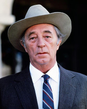 This is an image of Photograph & Poster of Robert Mitchum 289216