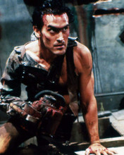 This is an image of Photograph & Poster of Bruce Campbell 289370
