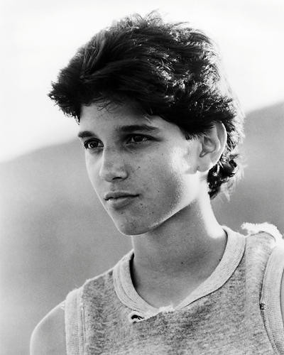 This is an image of Photograph & Poster of Ralph Macchio 197557