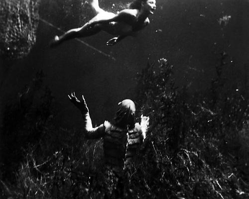 This is an image of Photograph & Poster of The Creature from the Black Lagoon 198002
